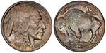 Buffalo Nickel coin